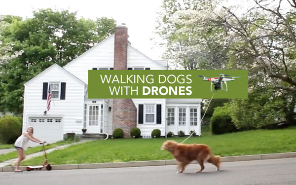 出典:http://interiorator.com/drone-walks-dog-parked-cars-as-art-and-more/
